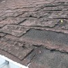Failure Of Asphalt Shingles Allowing Roof Leakage